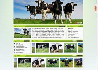 muye 绿色 环保 太阳能 奶牛 牧场 畜牧业 农业 科技 WordPress中英文模板主题